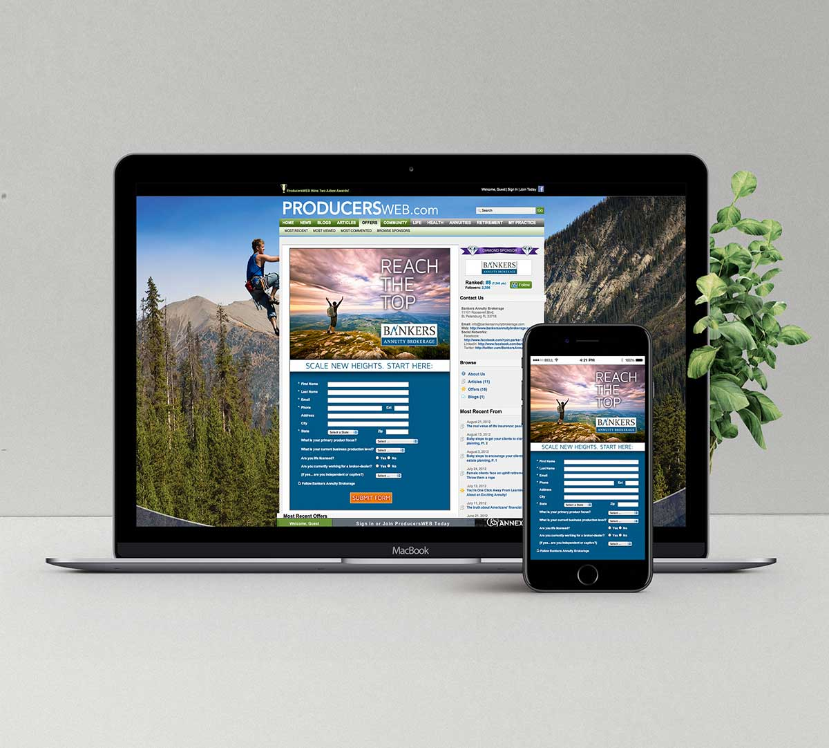 website-digital-advertising-web-design-clearwater-largo-fl
